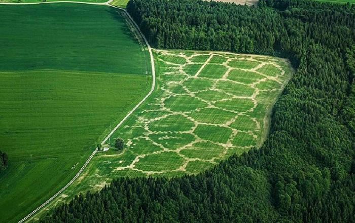 Precision farming-setup