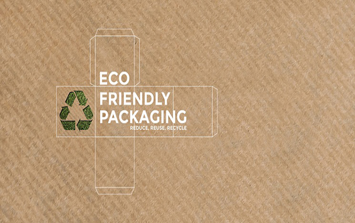 Eco-friendly packaging-setup